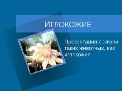 ИГЛОКОЖИЕ Презентация о жизни таких животных, как иглокожие