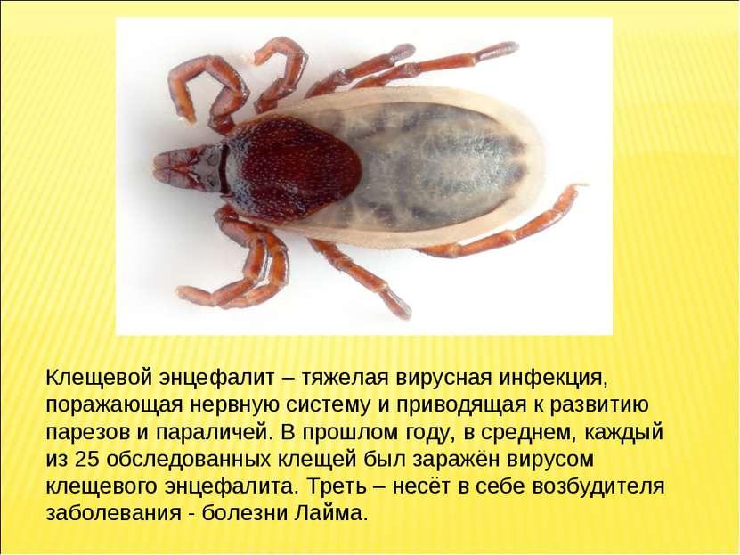 Клещевой энцефалит– тяжелая вирусная инфекция, поражающая нервную систему и ...