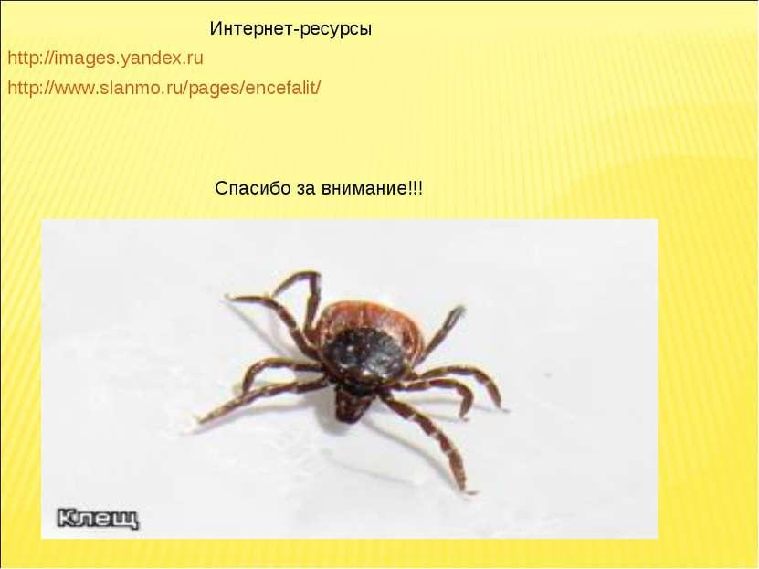 http://images.yandex.ru http://www.slanmo.ru/pages/encefalit/ Интернет-ресурс...