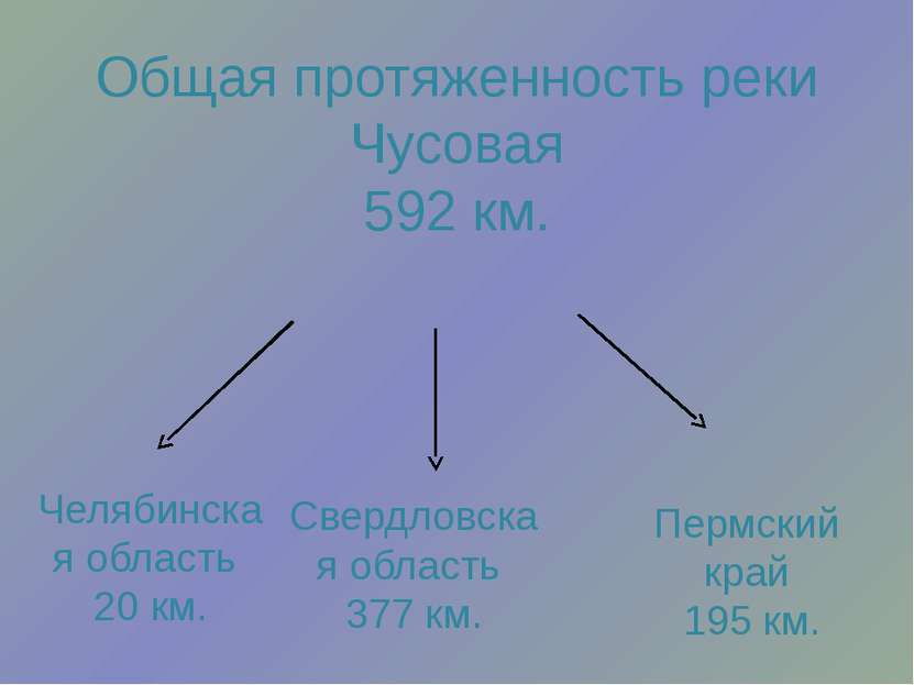 Общая протяженность реки Чусовая 592 км. Челябинская область 20 км. Свердловс...