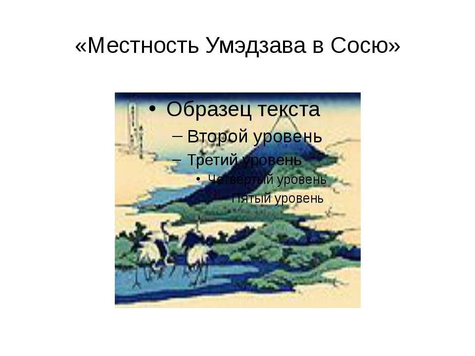 «Местность Умэдзава в Сосю»