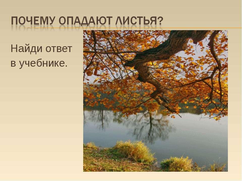 Найди ответ в учебнике.