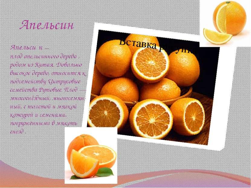 Апельсин Апельси н— плодапельсинного дерева, родом изКитая. Довольно выс...