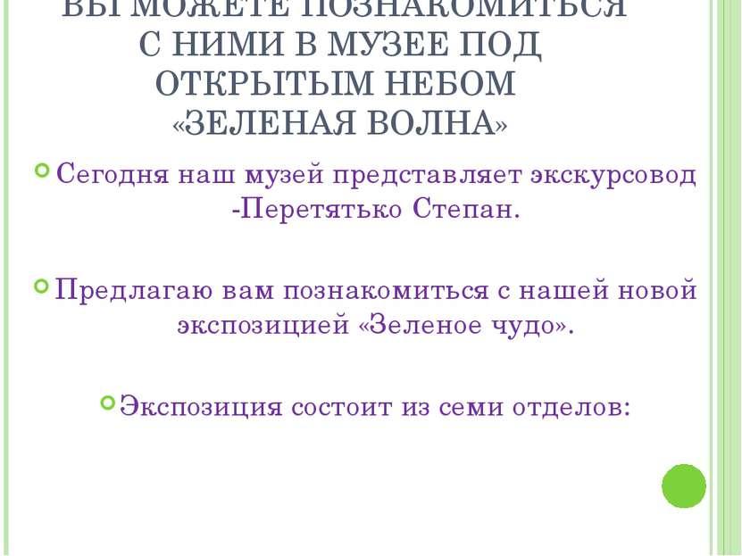 Сегодня наш музей представляет экскурсовод -Перетятько Степан. Предлагаю вам ...