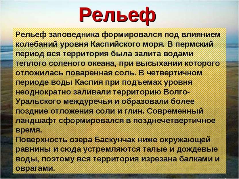Рельеф Рельеф заповедника формировался под влиянием колебаний уровня Каспийск...