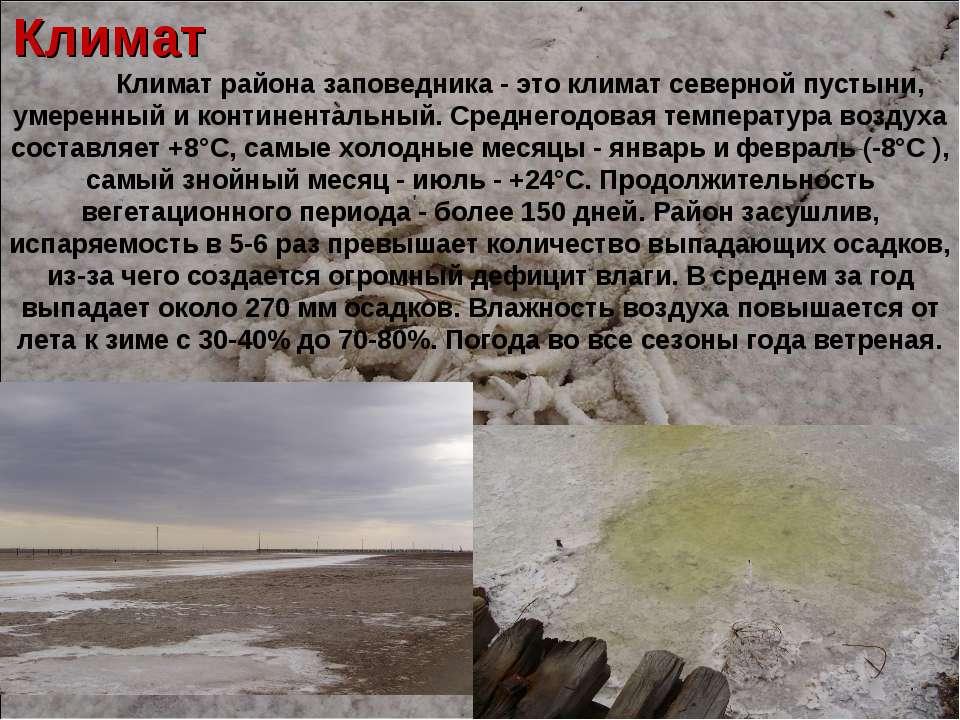 Климат Климат района заповедника - это климат северной пустыни, умеренный и к...