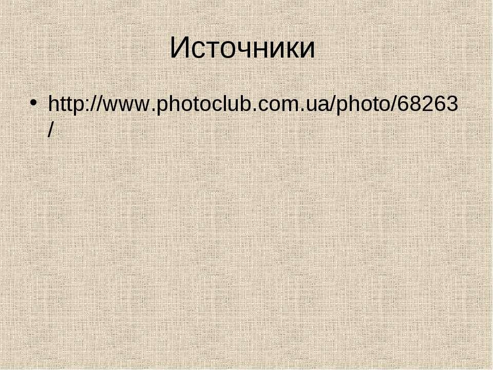 Источники http://www.photoclub.com.ua/photo/68263/