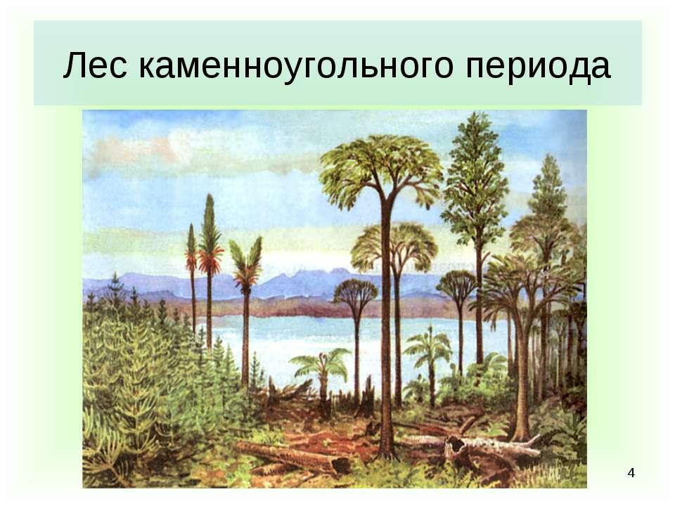 * Лес каменноугольного периода