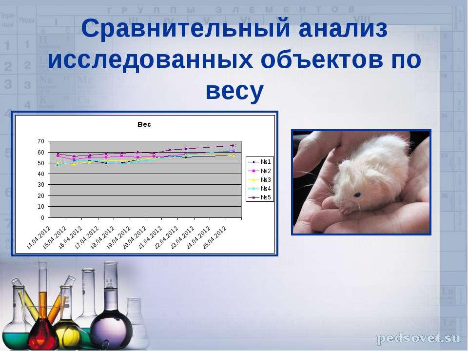 Сравнительный анализ исследованных объектов по весу