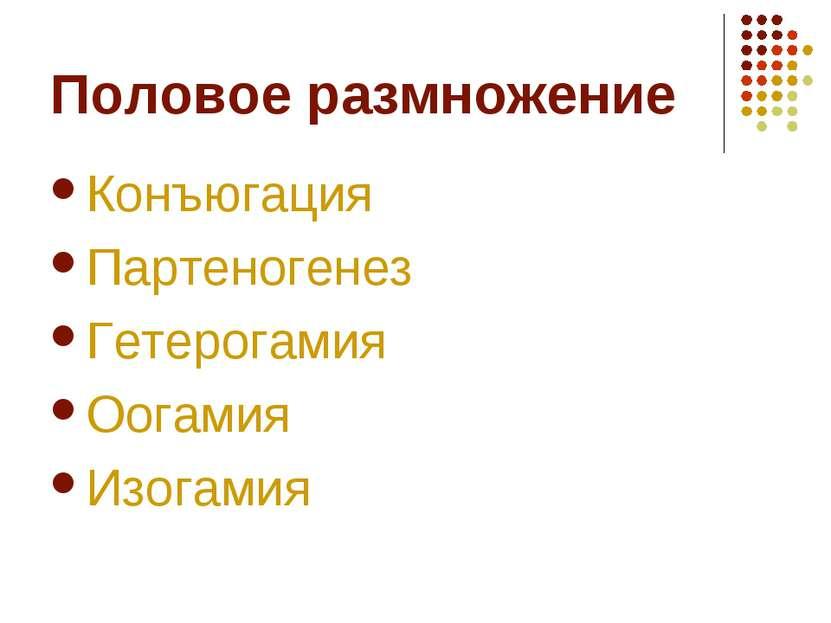 Половое размножение Конъюгация Партеногенез Гетерогамия Оогамия Изогамия