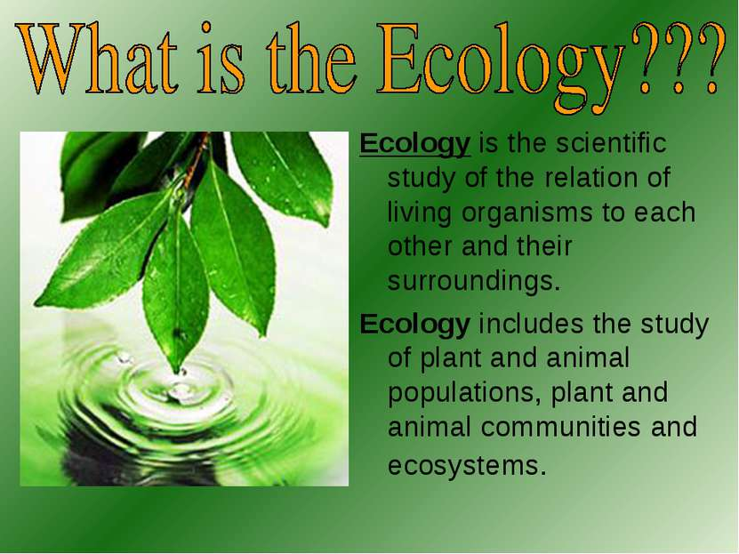Ecology is the scientific study of the relation of living organisms to each o...