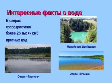Интересные факты о воде Марийская Швейцария В озерах сосредоточено более 26 т...