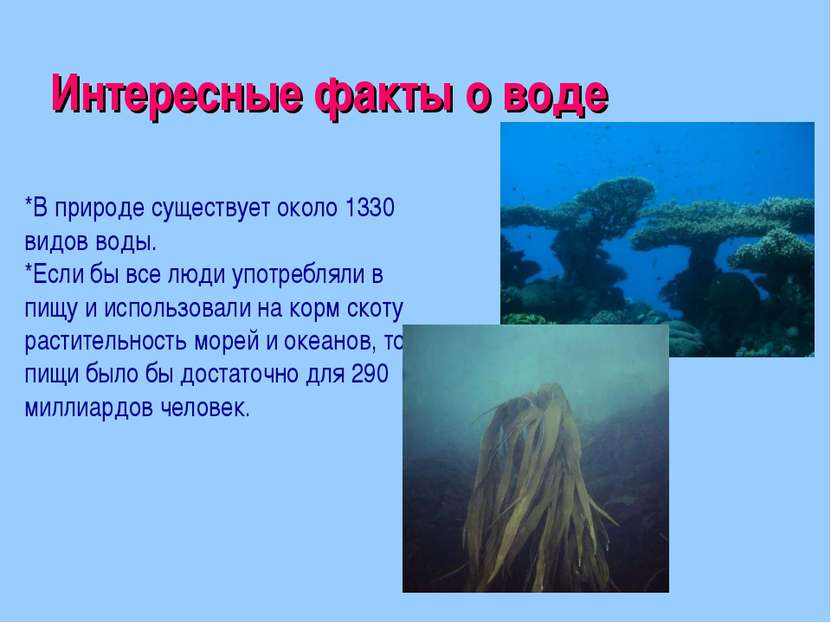 Интересные факты о воде *В природе существует около 1330 видов воды. *Если бы...