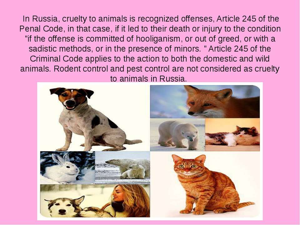 In Russia, cruelty to animals is recognized offenses, Article 245 of the Pena...