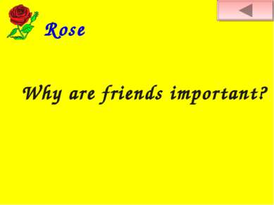 Rose Why are friends important?