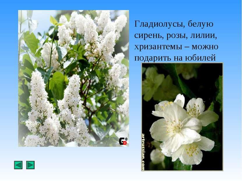 Гладиолусы, белую сирень, розы, лилии, хризантемы – можно подарить на юбилей
