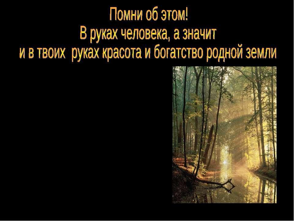 В зону лесов входят хвойные леса (тайга), смешанные и лиственные лиса. Растен...