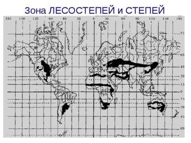 Зона ЛЕСОСТЕПЕЙ и СТЕПЕЙ