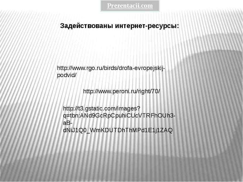 http://www.peroni.ru/right/70/ http://t3.gstatic.com/images?q=tbn:ANd9GcRpCpu...