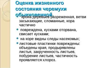 Оценка жизненного состояния черемухи обыкновенной. крона деревьев разреженная...