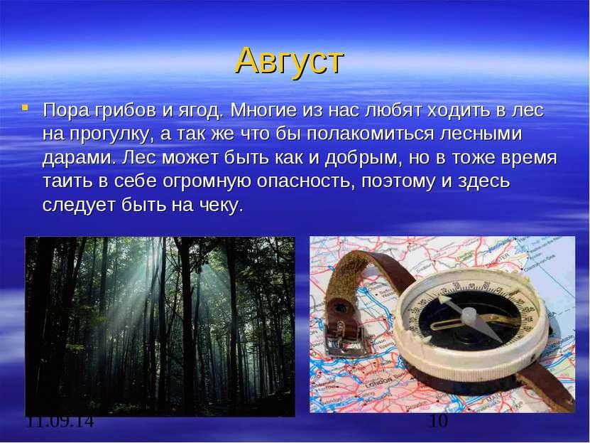 Август Пора грибов и ягод. Многие из нас любят ходить в лес на прогулку, а та...