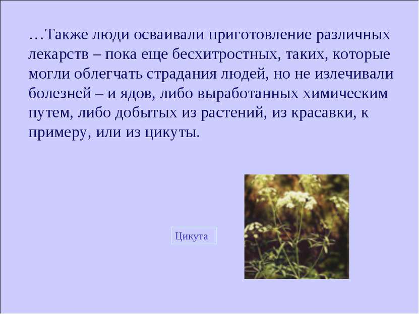 …Также люди осваивали приготовление различных лекарств – пока еще бесхитростн...