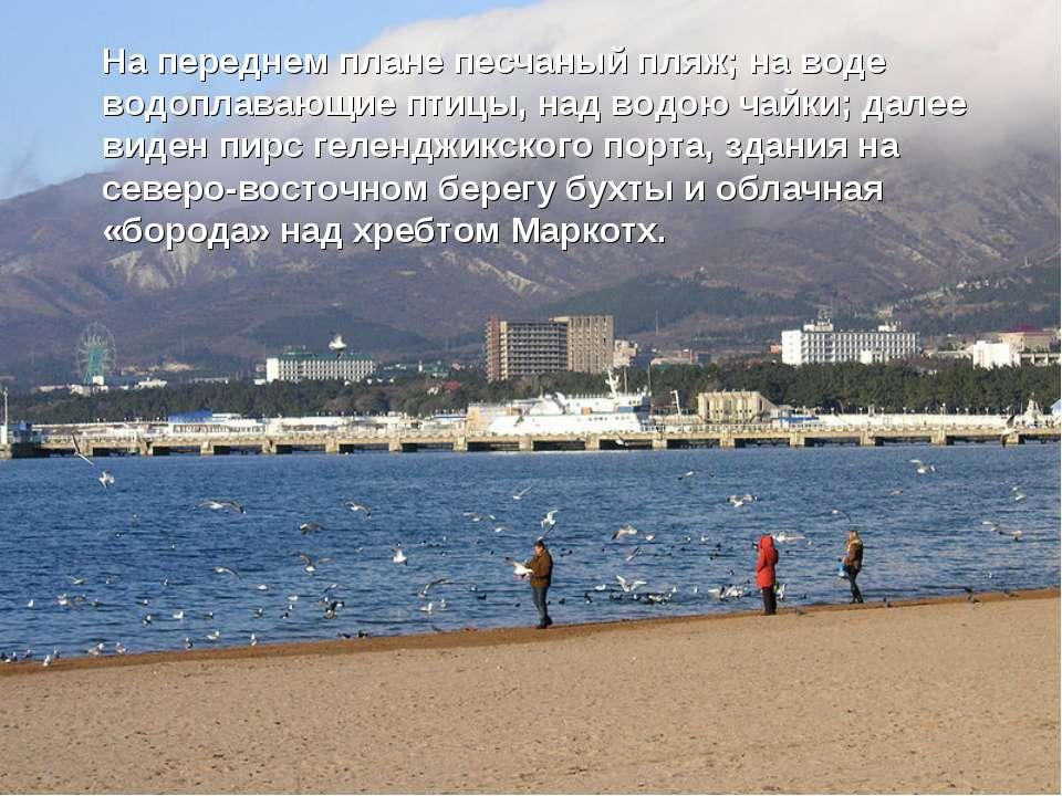 На переднем плане песчаный пляж; на воде водоплавающие птицы, над водою чайки...