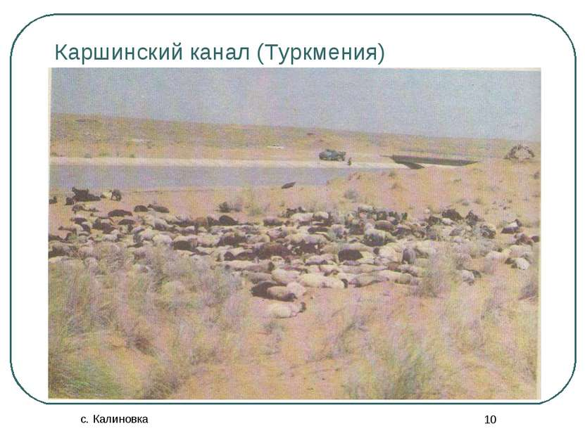 с. Калиновка * Каршинский канал (Туркмения)