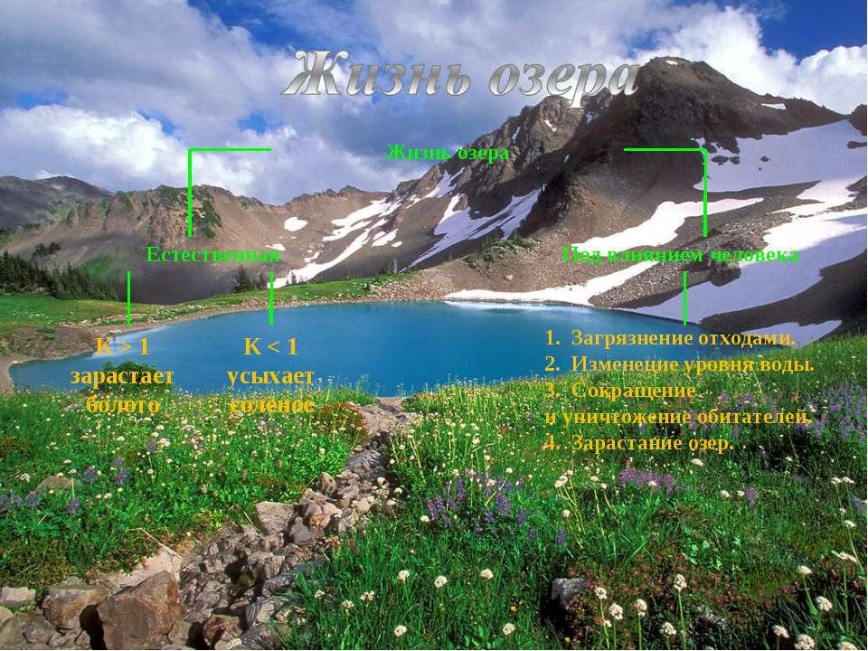 К > 1 зарастает болото 1. Загрязнение отходами. 2. Изменение уровня воды. 3. ...
