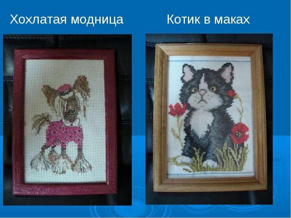 Котик в маках Хохлатая модница