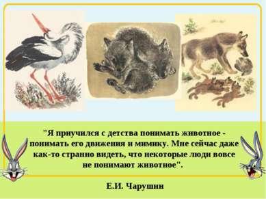 """""""Я приучился с детства понимать животное - понимать его движения и мимику. Мн..."""