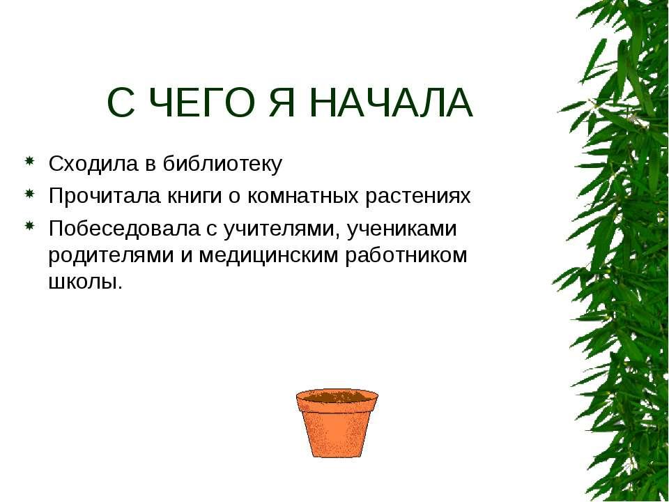 С ЧЕГО Я НАЧАЛА Сходила в библиотеку Прочитала книги о комнатных растениях По...
