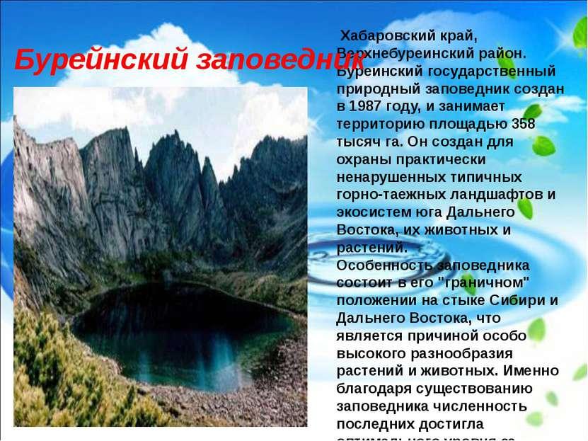 Хабаровский край, Верхнебуреинский район. Буреинский государственный природны...