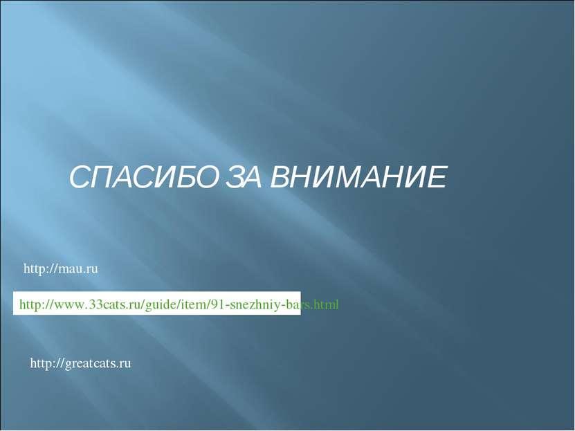http://www.33cats.ru/guide/item/91-snezhniy-bars.html http://greatcats.ru htt...