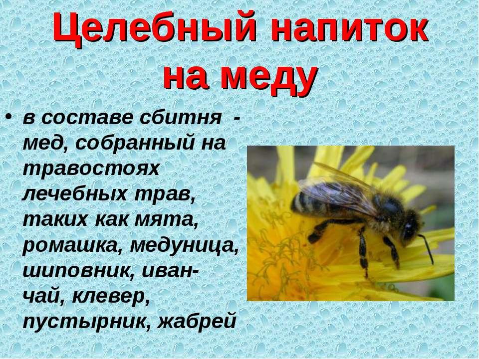 Целебный напиток на меду в составе сбитня - мед, собранный на травостоях лече...
