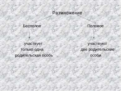 Размножение Бесполое Половое участвует участвуют только одна две родительские...