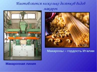 Изготовляется несколько десятков видов макарон Макаронная линия Макароны – го...