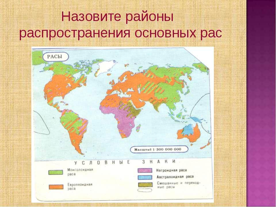 Назовите районы распространения основных рас