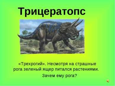 Трицератопс «Трехрогий». Несмотря на страшные рога зеленый ящер питался расте...