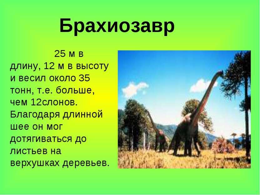 Брахиозавр 25 м в длину, 12 м в высоту и весил около 35 тонн, т.е. больше, че...