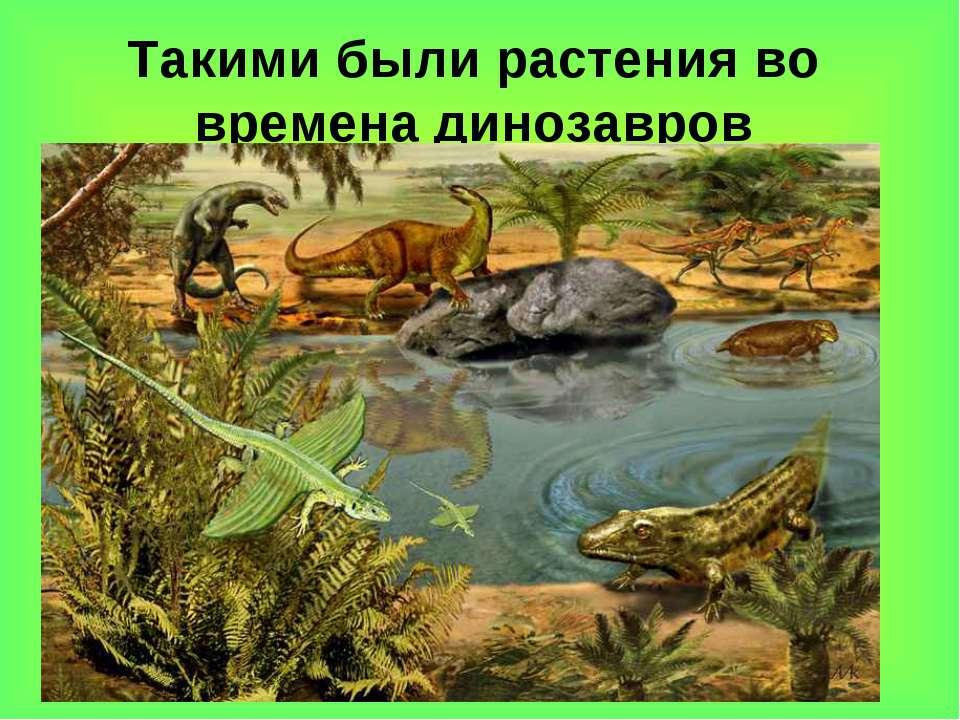 Такими были растения во времена динозавров