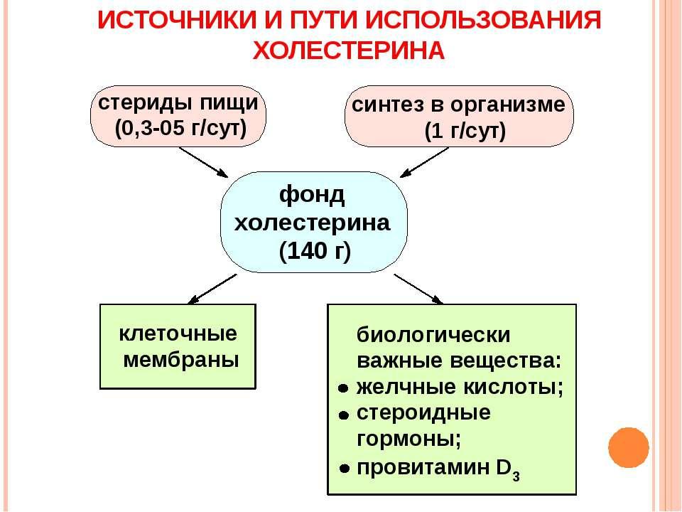 ИСТОЧНИКИ И ПУТИ ИСПОЛЬЗОВАНИЯ ХОЛЕСТЕРИНА