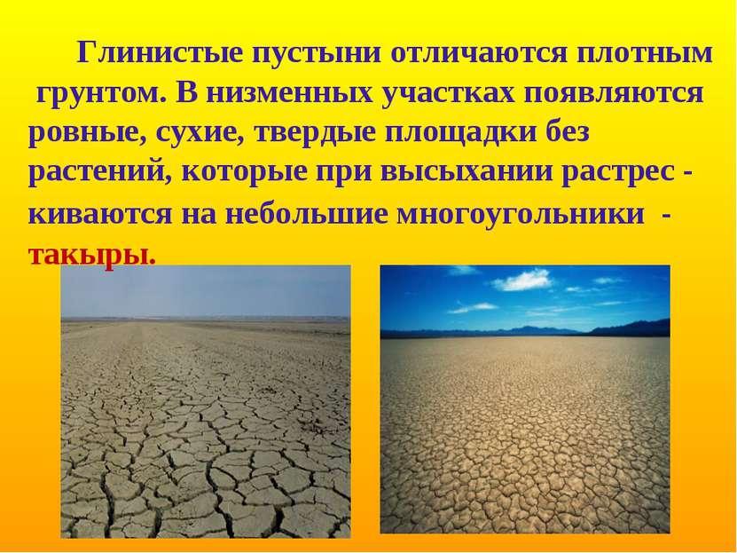 Глинистые пустыни отличаются плотным грунтом. В низменных участках появляются...