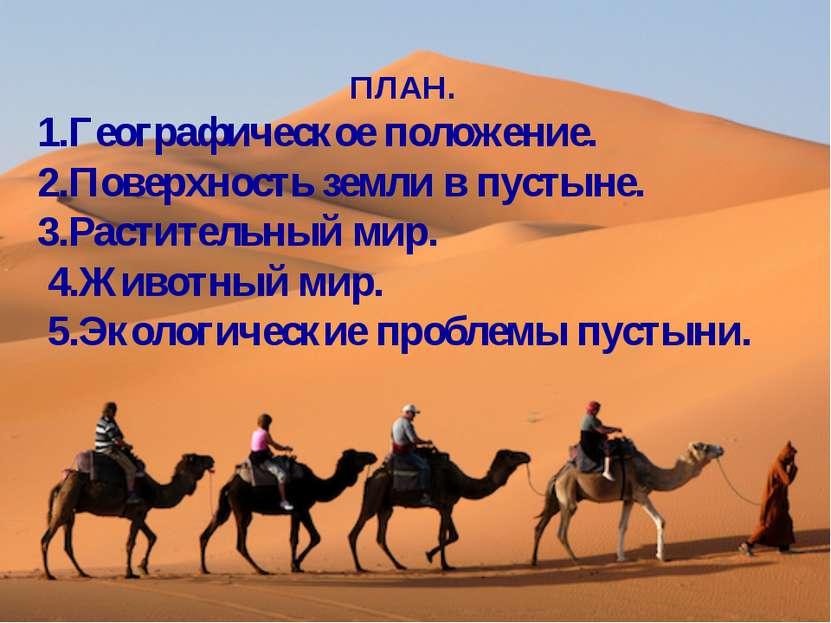 ПЛАН. 1.Географическое положение. 2.Поверхность земли в пустыне. 3.Растительн...