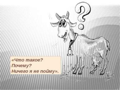 «Что такое? Почему? Ничего я не пойму».