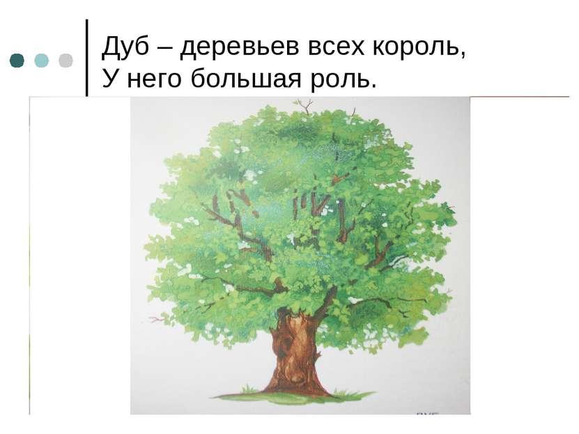 Дуб – деревьев всех король, У него большая роль.