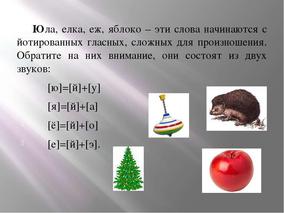 Юла, елка, еж, яблоко – эти слова начинаются с йотированных гласных, сложных ...