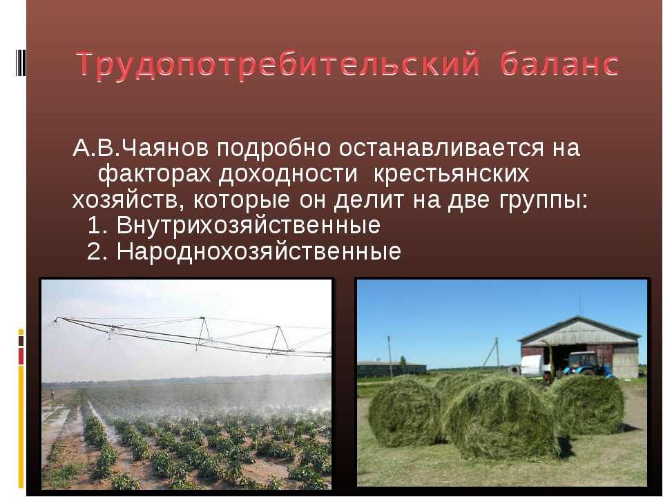 А.В.Чаянов подробно останавливается на факторах доходности крестьянских хозяй...