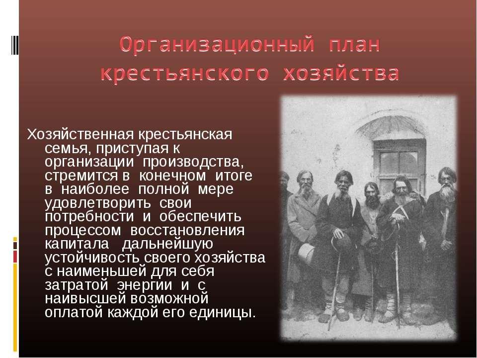 Хозяйственная крестьянская семья, приступая к организации производства, стрем...