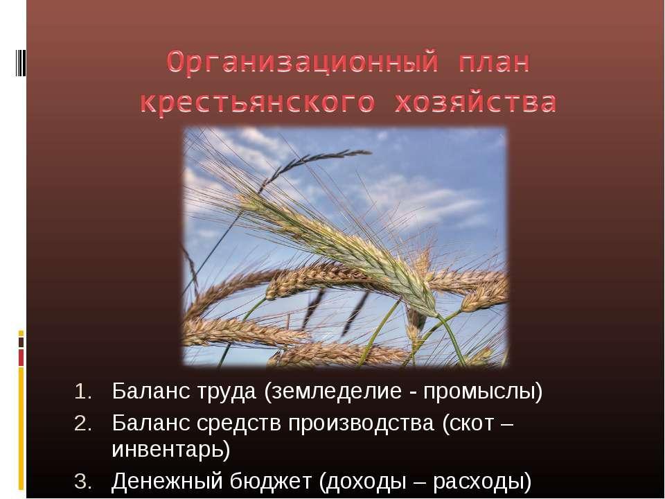 Баланс труда (земледелие - промыслы) Баланс средств производства (скот – инве...